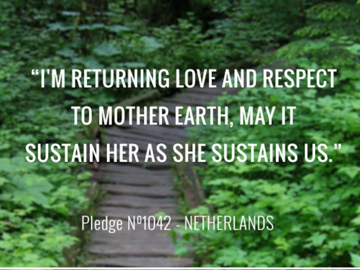 Returning Love and Respect to Mother Earth