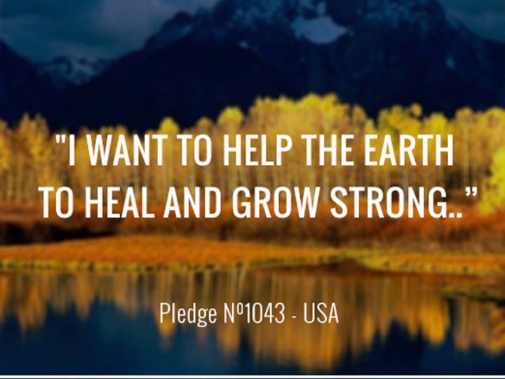 I want to help the earth to heal and grow strong