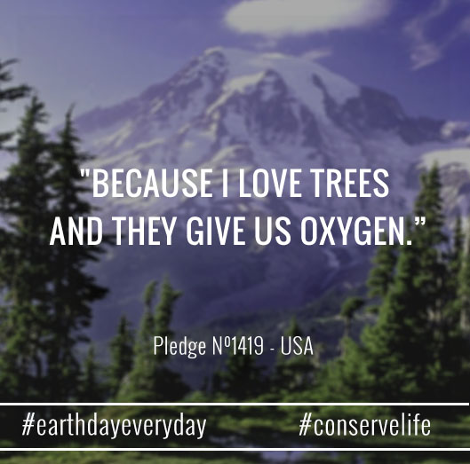 I love trees they give us oxygen