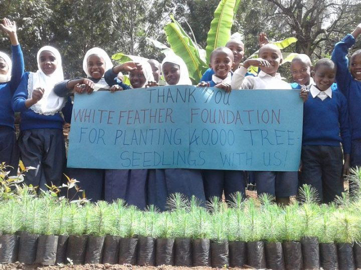 Thanks from Tanzania Tree Planting Project.